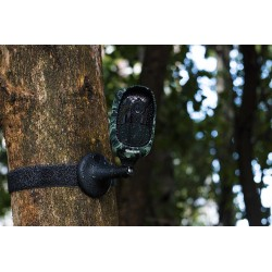 Miško kamera